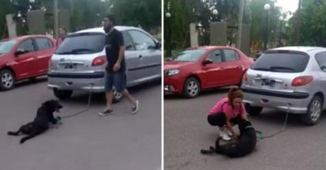 Una maestra encadenó a su perro al auto y lo arrastró siete cuadras